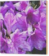 Flowers 2078 Pastel Chalk 2 Wood Print