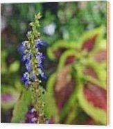 Flowers 5 Wood Print