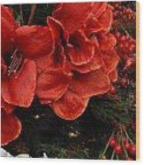 Flowers 554 Wood Print