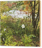 Flowers Along The River In Fall Wood Print