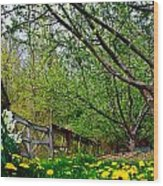 Flowers And Fence Wood Print