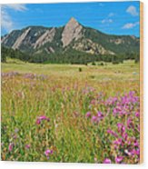 The Flatirons Colorado Wood Print