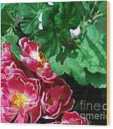 Flowers And Leaves Wood Print