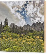 Flowers And Mountains And Sky...oh My Wood Print