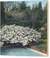Flowers And Pool Wood Print