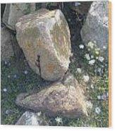 Flowers And Rocks Wood Print