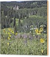 Flowers At Crested Butte Wood Print