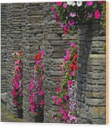 Flowers At Liscannor Rock Shop Wood Print