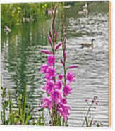 Flowers At The Lake Wood Print