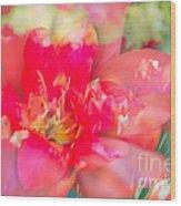 Flowers Bloom In Multiples Wood Print