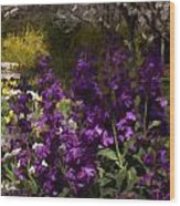 Flowers Dallas Arboretum V18 Wood Print