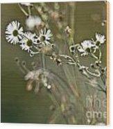 Flowers End Wood Print