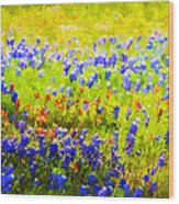 Flowers Field Background Wood Print