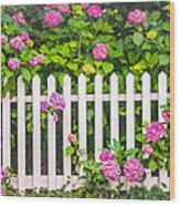 Flowers - Floral - White Picket Fence Wood Print