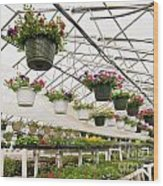 Flowers Growing In Foil Hothouse Of Garden Center Wood Print