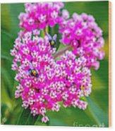 Flowers In A Purple Heart Wood Print