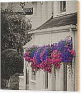 Flowers In Cashel Wood Print