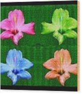 Flowers In Ireland Wood Print