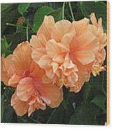 Flowers In Peach Wood Print