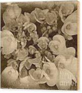 Flowers In Sepia Wood Print
