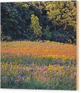 Flowers In The Meadow Wood Print