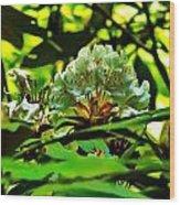 Flowers In The Woods Wood Print