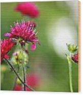 Flowers Intwined  Wood Print