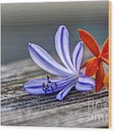 Flowers Of Blue And Orange Wood Print