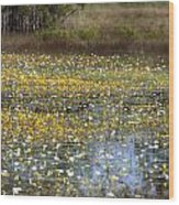 Flowers Of The Billabong Wood Print