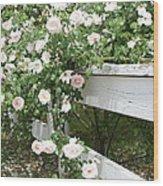 Flowers On Fence Wood Print