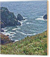 Flowers On Isle Of Guernsey Cliffs Wood Print