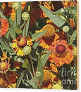 Flowers On The High Line Wood Print