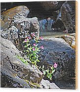 Flowers On The Rock Wood Print