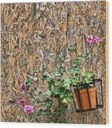 Flowers On Wall - Taromina Wood Print