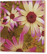 Flowers Pink And White Wood Print