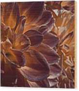 Flowers Should Also Turn Brown In Autumn Wood Print