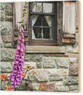 Flowers Stone And Old Country Window Wood Print