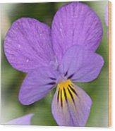 Flowers That Smile Wood Print