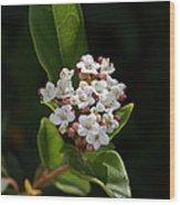 Flowers-tiny White Wood Print