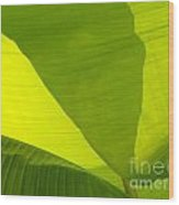 Flowing Banana Leaf Wood Print