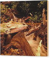 Flowing Betwixed Old Wood Near Mt St Helens Wood Print