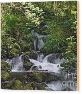 Flowing Creek In Spring  Wood Print