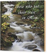 Flowing Creek With Scripture Wood Print