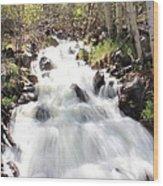 Flowing Fast Wood Print