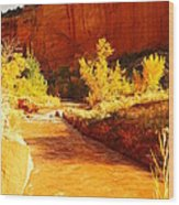 Flowing From Capital Reef Wood Print