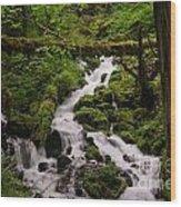 Flowing Stream In Spring Wood Print