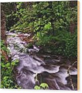 Flowing Through The Forest Wood Print