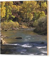 Flowing Through Zion National Park Wood Print