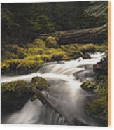 Flowing Waters - Olympic National Park Wood Print