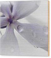 Fl.purple5 Wood Print